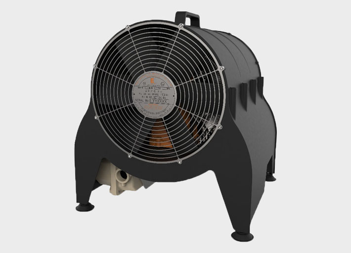 Explosion proof fan heater